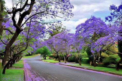 Colours of Islamabad, Pakistan